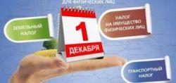b_250_250_16777215_00_images_nalogi1.jpg