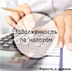 b_250_250_16777215_00_images_zadolgenost_po_nalogam.jpg