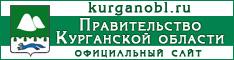 Правительство области